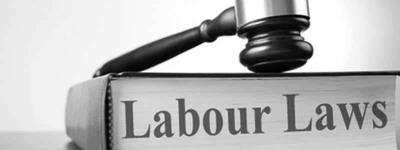 California Labor Laws and the Domestic Workers Bill of Rights Movement